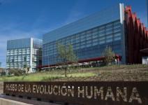 Museo de la Evolución Humana (1h30)