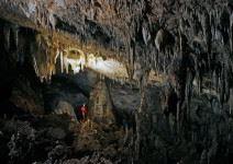 Cuevas de Nerja y Museo (2h)