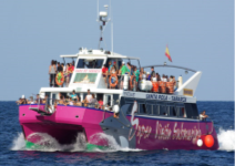 Visita la Isla de Tabarca en Catamarán (1/2 Jornada)