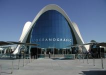 Ciudad de las Artes y las Ciencias: Oceanográfico + Museo de la Ciencia (Media Jornada)