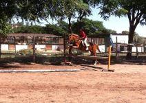 P5 - Día 3: Inmersión - Parque Forestal, Taller Artesanal e Hípica.