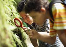P3-Día 3: Visita a Centro de Interpretación del Parque Torre del Vinagre