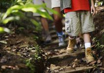 P4- Día 3: Parque Forestal, Taller Artesanal e Hípica.