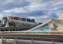 Ciudad de las Artes y las Ciencias: Oceanográfico (Media Jornada)