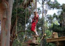 Parque de árboles y tirolina Cercedilla (1/2 jornada) -3º y 4º PRIMARIA