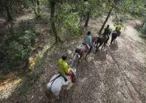 P6 CT- Día 4: Ruta a caballo.