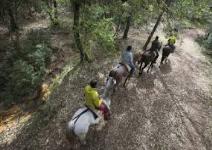 P5 CT- Día 4: Visita Ubeda y Baeza
