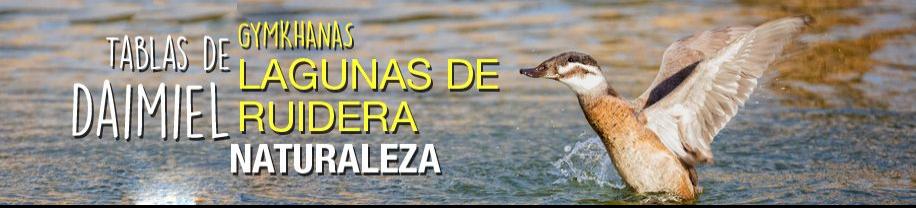 Viaje Fin de Curso en Ciudad Real - Monitores 24H