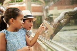 Viaje fin de curso en Madrid para primaria