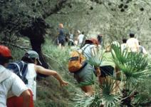 P4 (CA)- Día 4: Taller ambiental y regreso