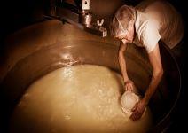 P3 - Dia 2 (AE): Elaboración de queso y talleres