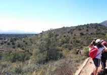 P3 FC - Día 3: Actividad y regreso (Camping Sierra Espuña)