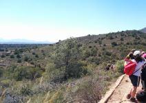 P4 FC - Día 4: Orientación y regreso (Camping Sierra Espuña)