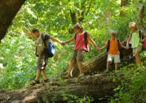 P3 (MA) - Día 3: actividades y regreso al colegio