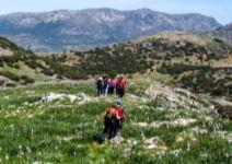 P3 Albergue en Valdepeñas (CÑ) - Día 3: actividades y regreso