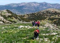 P4 Albergue en Valdepeñas (CÑ) - Día 4: actividades y regreso