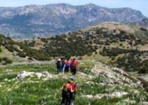 P5 Albergue en Valdepeñas (CÑ) - Día 5: actividades y regreso