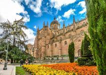 Visita guiada Salamanca 2h