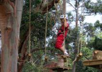 P6- AA- Dia 4: Piragüismo y parque de arboles