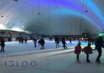 Actividad de Patinaje sobre hielo