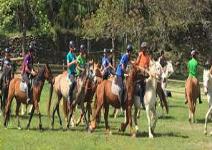Inflapark + Excursión a caballo