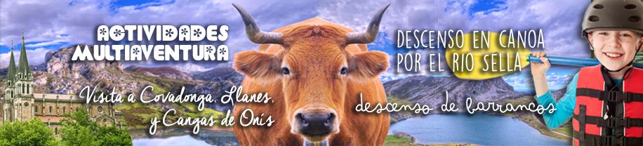 Viaje fin de Curso en Asturias - Multiaventura