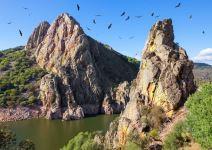 P3AJ-Día 1: Parque Nacional de Monfraguë y Rally Fotográfico.