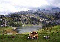 P3 - Paquete aventura (PT) - Día 3: Ruta de Senderismo + Covadonga y Despedida