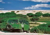 Visita del Parque de Doñana en 4x4  (4 horas) - Hasta 14 años