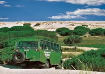 Visita del Parque de Doñana (4 horas)