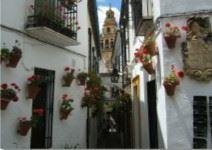 Visita guiada por Cordoba (3h)