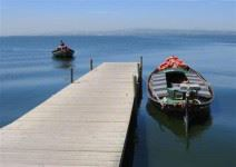 Paseo en barca por el Parque Natural de la Albufera (1 hora)