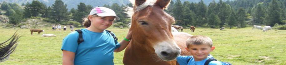 niños con caballo en el campo