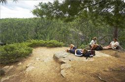Excursión de senderismo en la Sierra norte de Madrid